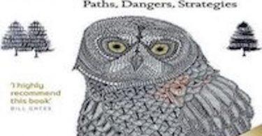 Superintelligence Paths Dangers Strategies read